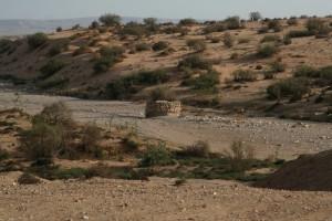 ביר ת'מילה                                                                         צילום אמנון (בוצי) ליבנה